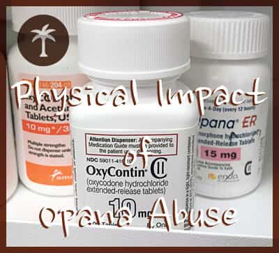oxycontin bottle with opana and percocet bottle on pharmacy shelf