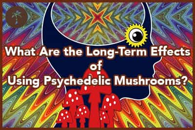 The long term effects after using psychedelic drugs like magic mushrooms