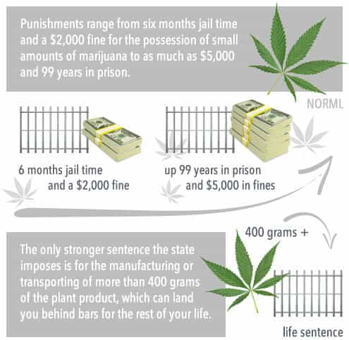 punishments range from six months jail time, $2,000 fine for possession of small amounts of marijuana and up to $5,000 and 99 years in prison.