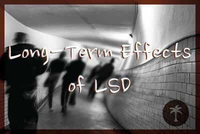Long Term Effects Of Lsd Desert Hope